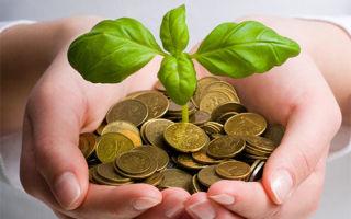 Привлечение удачи и денег: фэншуй, обряды и приметы