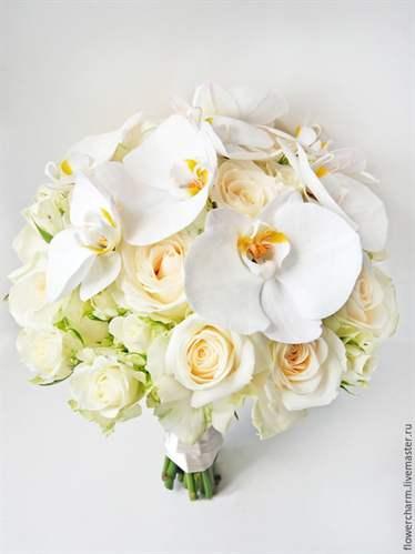 Букет из 7 орхидей как ухаживать #4