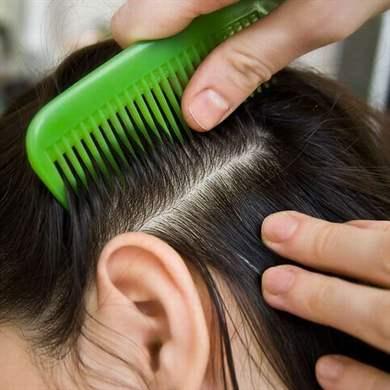 Как защитить волосы в домашних условиях