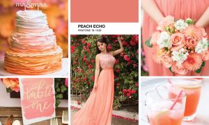Свадьба в персиковом цвете: идеи и удачные сочетания цветов
