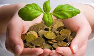 Как притянуть к себе деньги и удачу: приметы, талисманы, заговоры